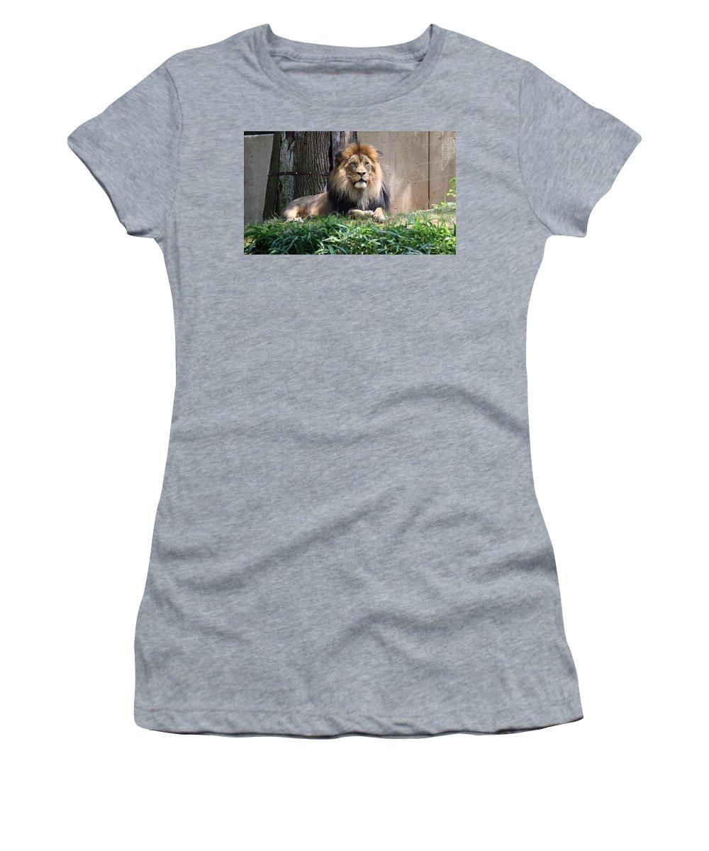 Smithsonian Women's T-Shirt featuring the photograph National Zoo - Luke - African Lion by Ronald Reid