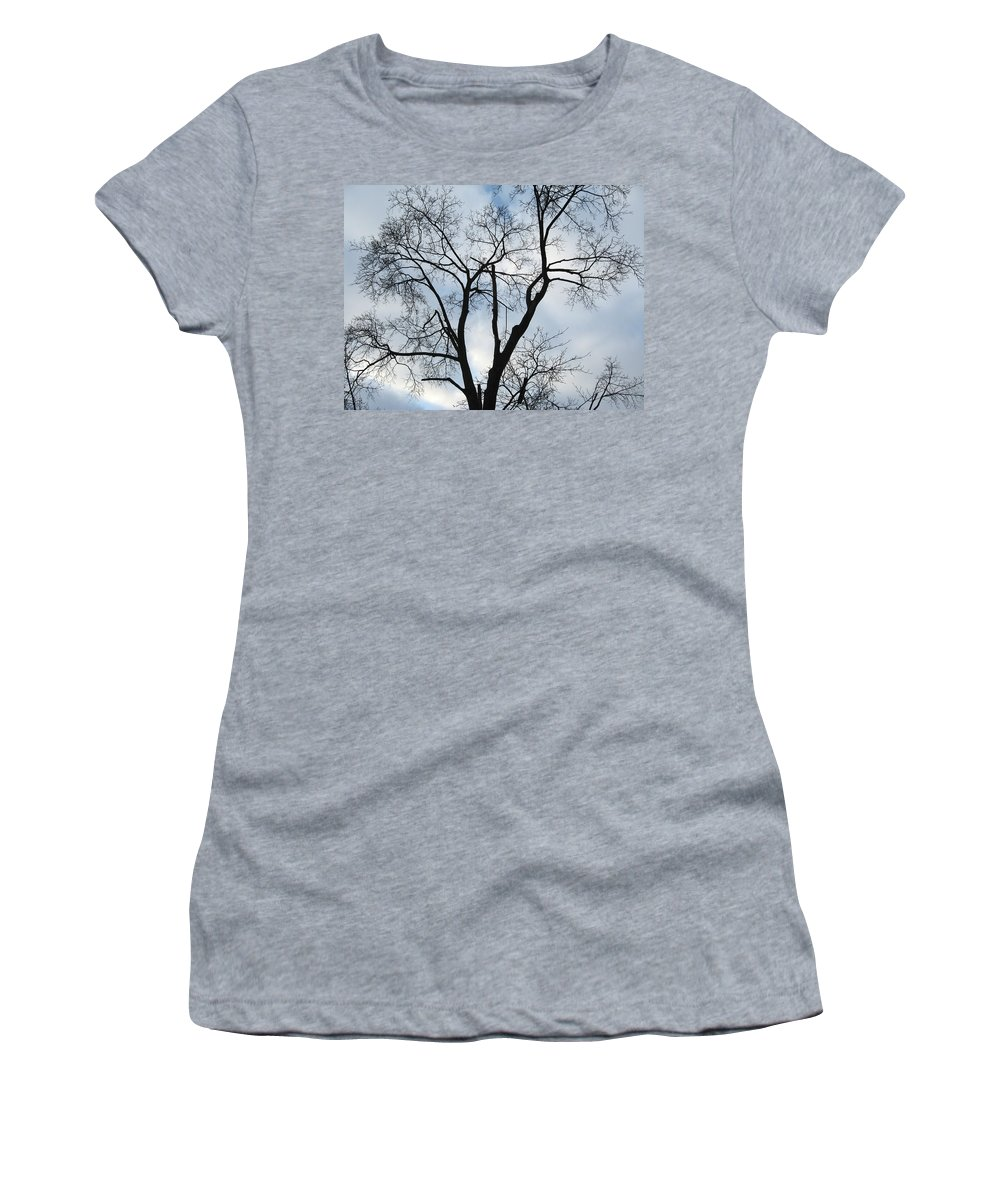 Nature Women's T-Shirt featuring the photograph Nature - Tree In Toronto by Munir Alawi