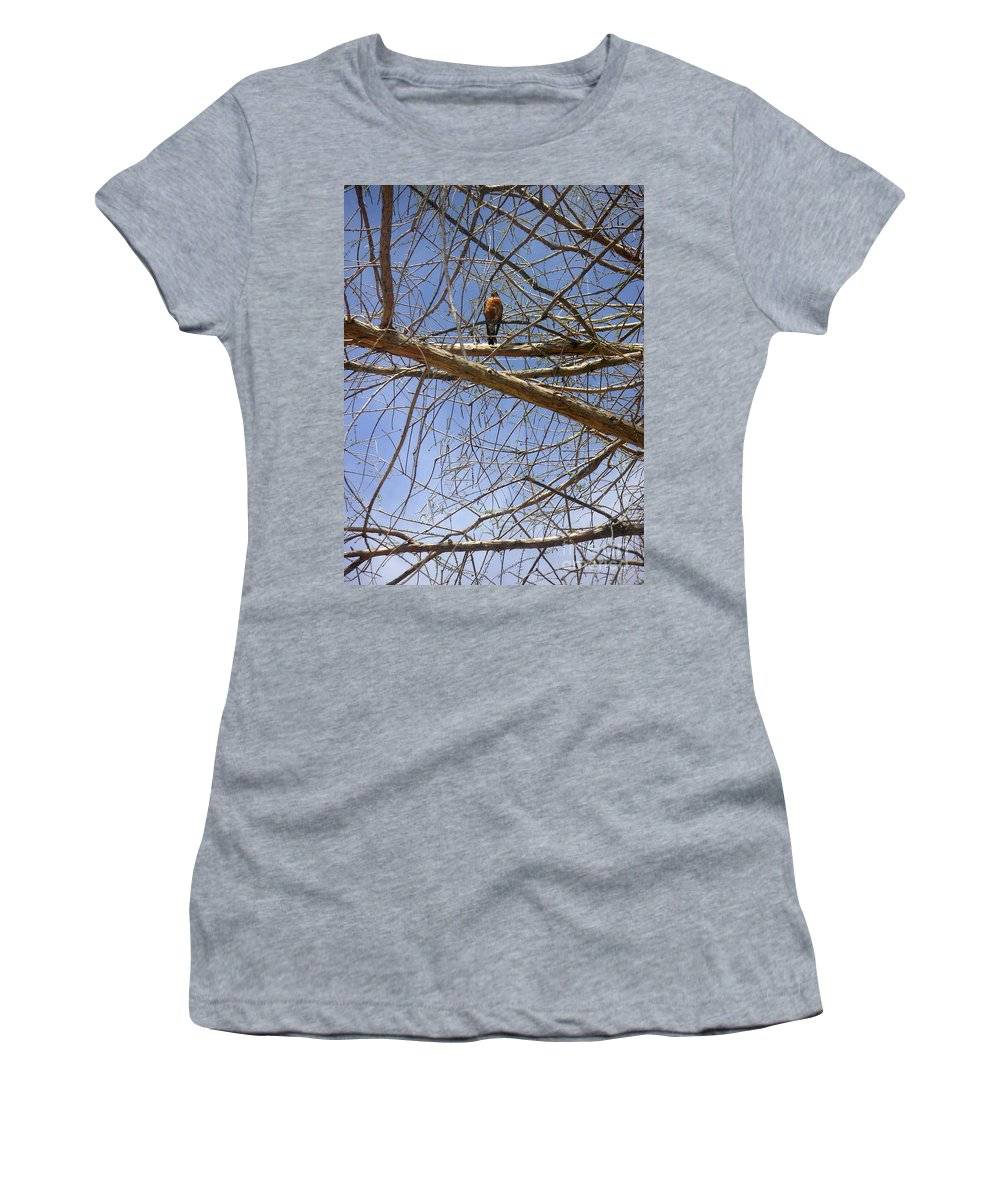 Nature Women's T-Shirt (Athletic Fit) featuring the photograph Nature In The Wild - Annoucing Spring by Lucyna A M Green
