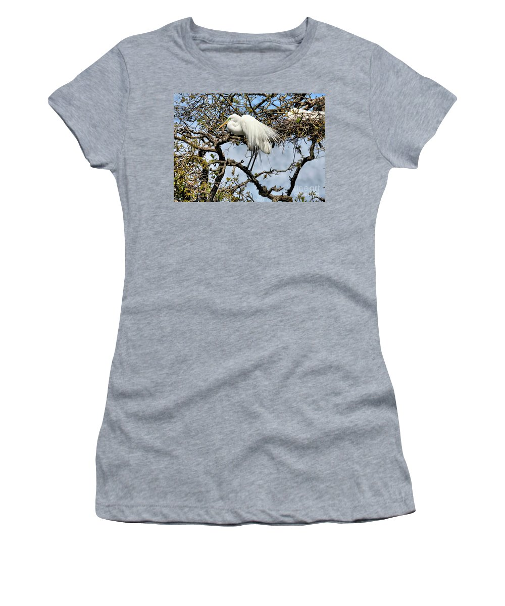 Giant Egret Women's T-Shirt (Athletic Fit) featuring the photograph Nesting Time by Deborah Benoit