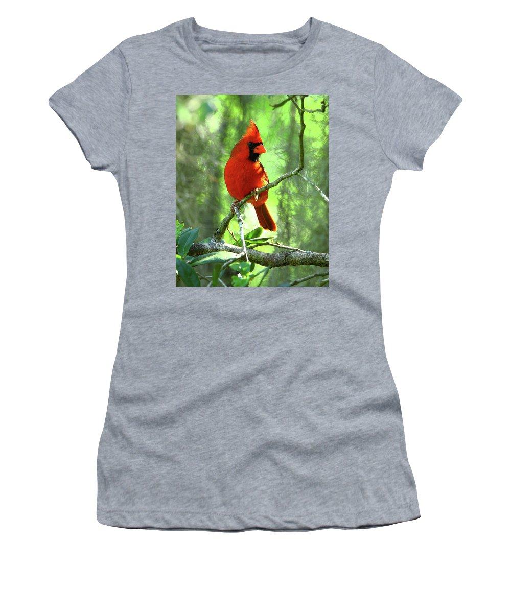 Nature Women's T-Shirt (Athletic Fit) featuring the photograph Northern Cardinal Proud Bird by Herbert L Fields Jr