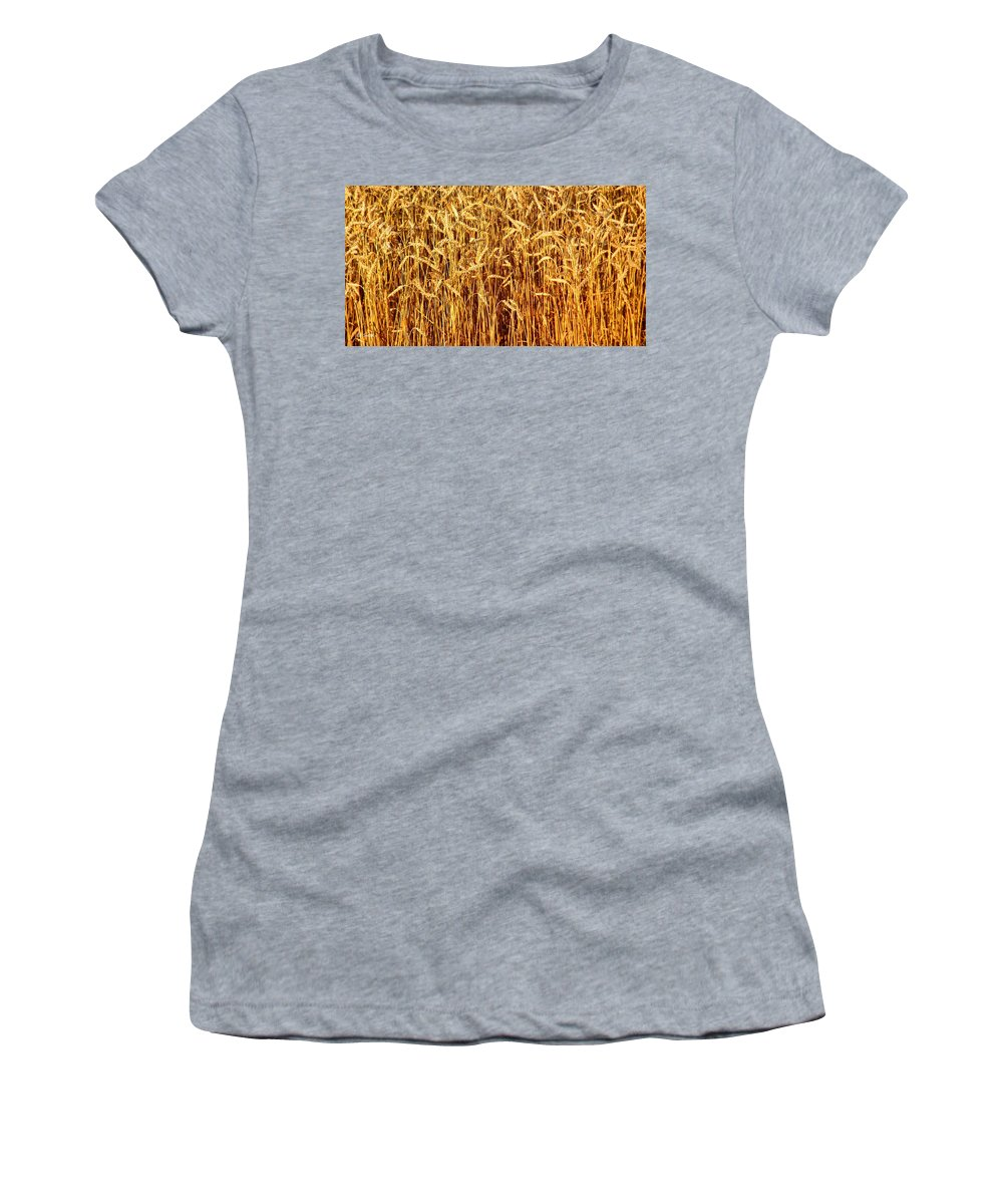Not Just In Kansas Women's T-Shirt (Athletic Fit) featuring the photograph Not Just In Kansas by Ed Smith