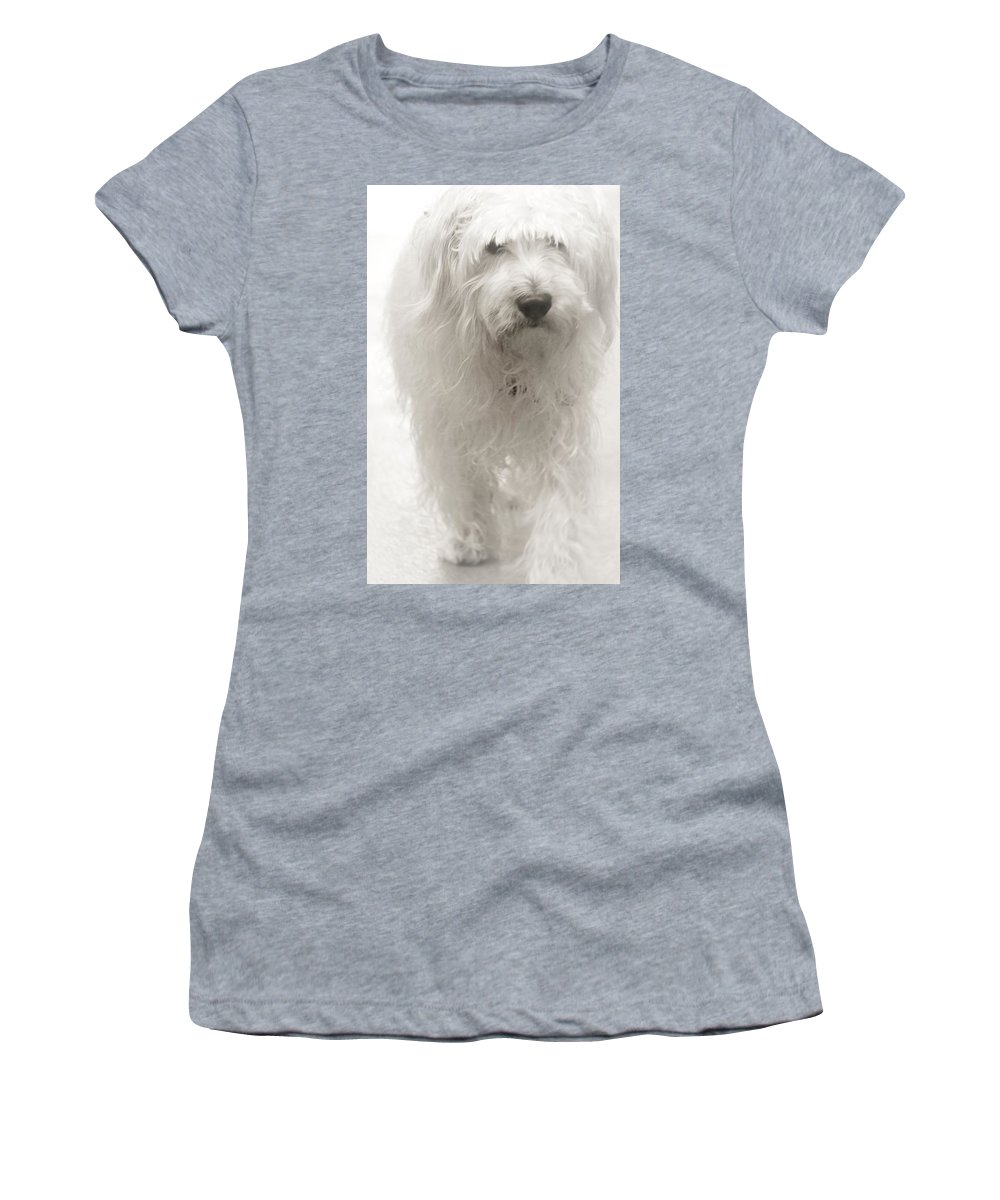 Women's T-Shirt (Athletic Fit) featuring the photograph Oliver... by The Art Of Marilyn Ridoutt-Greene