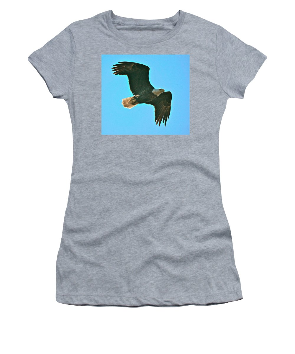 Related Tags: Eagle Artwork Women's T-Shirt featuring the photograph On Patrol by Robert Pearson