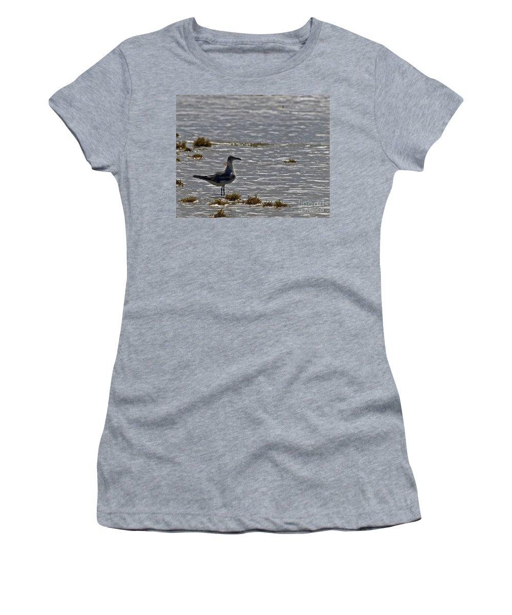 Bird Women's T-Shirt featuring the photograph On The Beach by Ken Frischkorn
