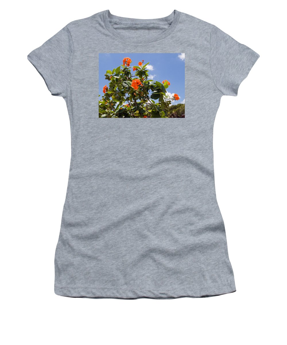 Hibiscus; Rosasinensis; Rosa; Sinensis; Rosa-sinensis; Tree; Bush; Shrub; Plant; Flower; Flowers; Fl Women's T-Shirt featuring the photograph Orange Hibiscus With Fruit On The Indian River In Florida by Allan Hughes