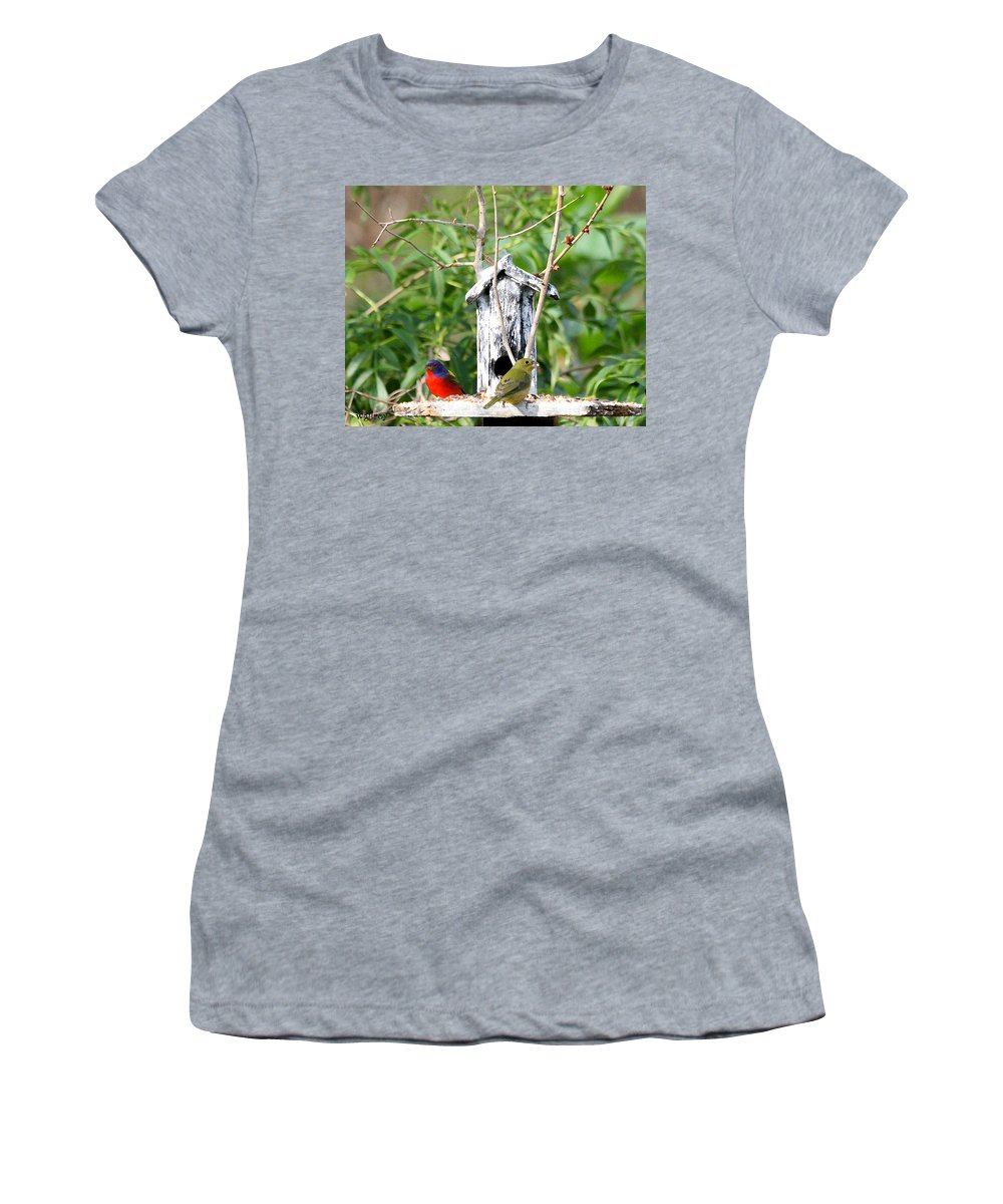 Painted Buntings Women's T-Shirt featuring the photograph Painted Buntings by W Gilroy