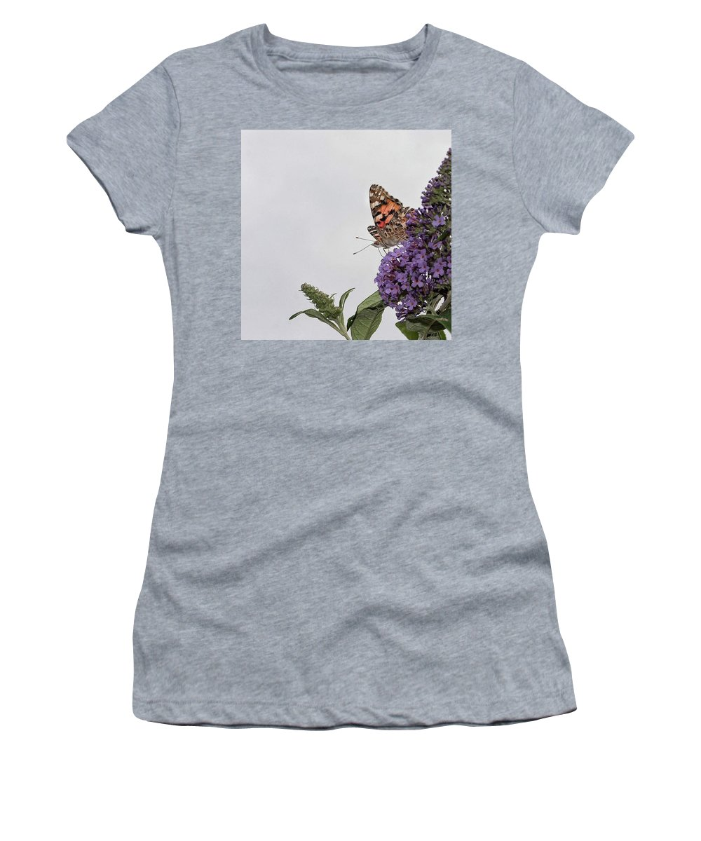 Insectsofinstagram Women's T-Shirt featuring the photograph Painted Lady (vanessa Cardui) by John Edwards