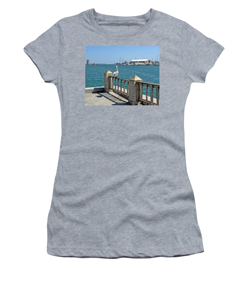 Port; Canaveral; Pelican; Gaze; Florida; Wildlife; Florida; Harbor; Atlantic; Ocean; Sea; Bird; Wate Women's T-Shirt (Athletic Fit) featuring the photograph Pelican Gazing At Port Canaveral In Florida by Allan Hughes