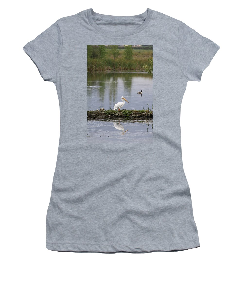 Bird Women's T-Shirt featuring the photograph Pelican Reflection by Alyce Taylor