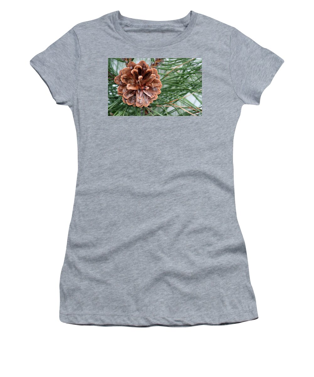 Pine Cone Women's T-Shirt (Athletic Fit) featuring the photograph Pine Delight by Mary Anne Delgado