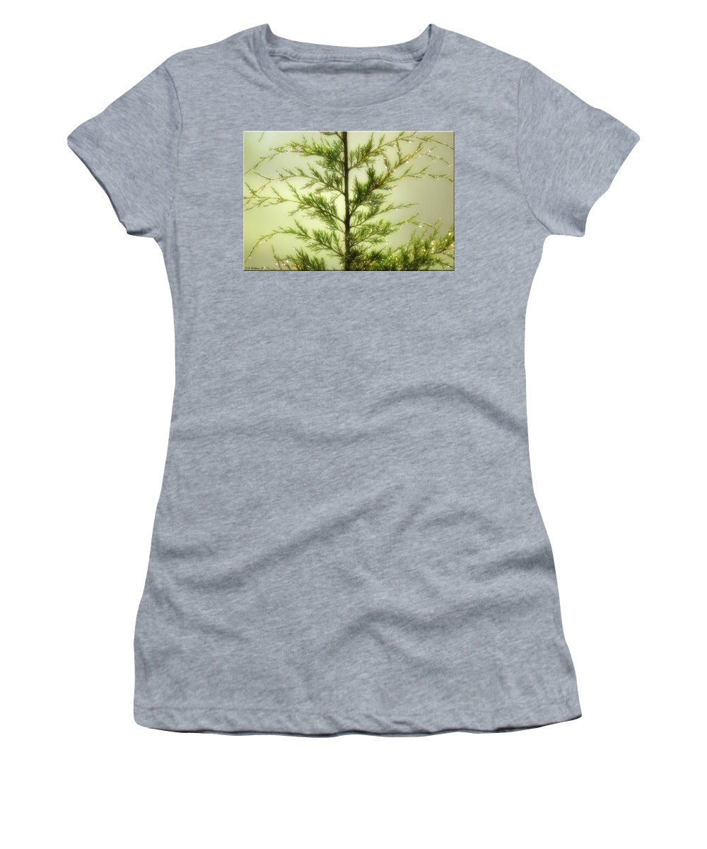 2d Women's T-Shirt (Athletic Fit) featuring the photograph Pine Shower by Brian Wallace