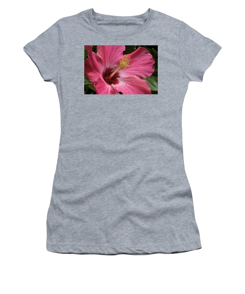 Flower Women's T-Shirt (Athletic Fit) featuring the photograph Pink Hibiscus by Phyllis Denton