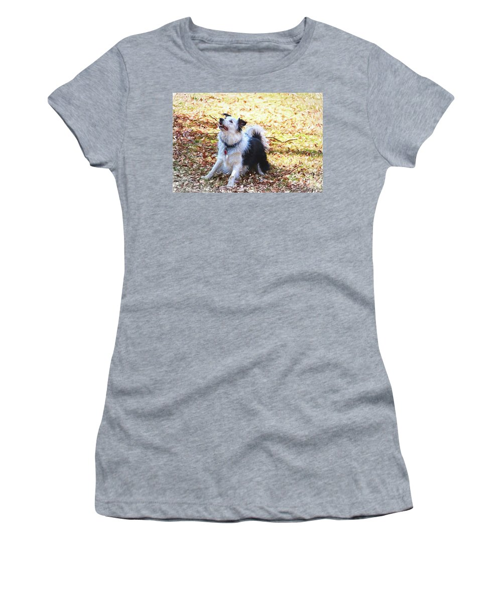 Alicegipsonphotographs Women's T-Shirt featuring the photograph Play With Me by Alice Gipson