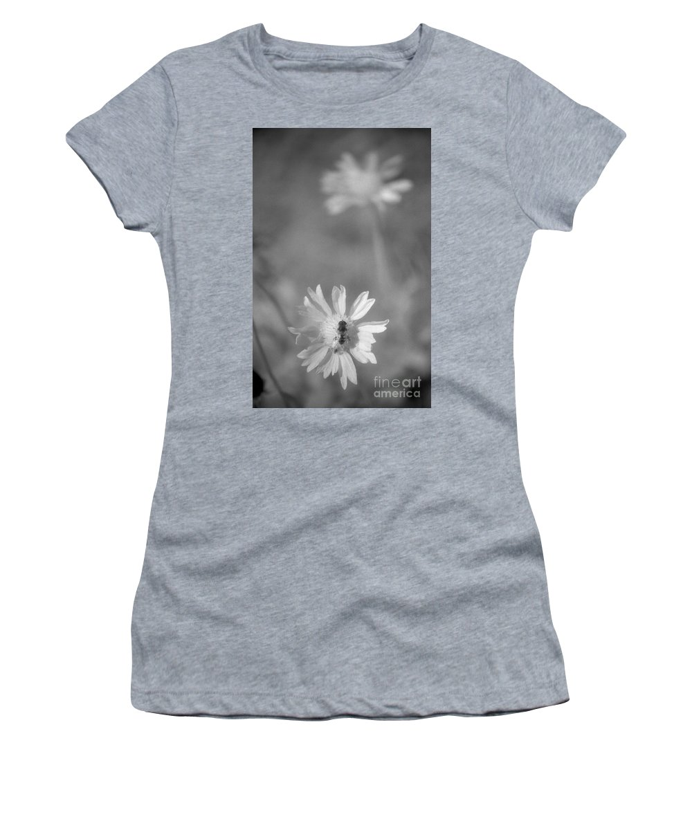 Pollinate Women's T-Shirt (Athletic Fit) featuring the photograph Pollination by Richard Rizzo