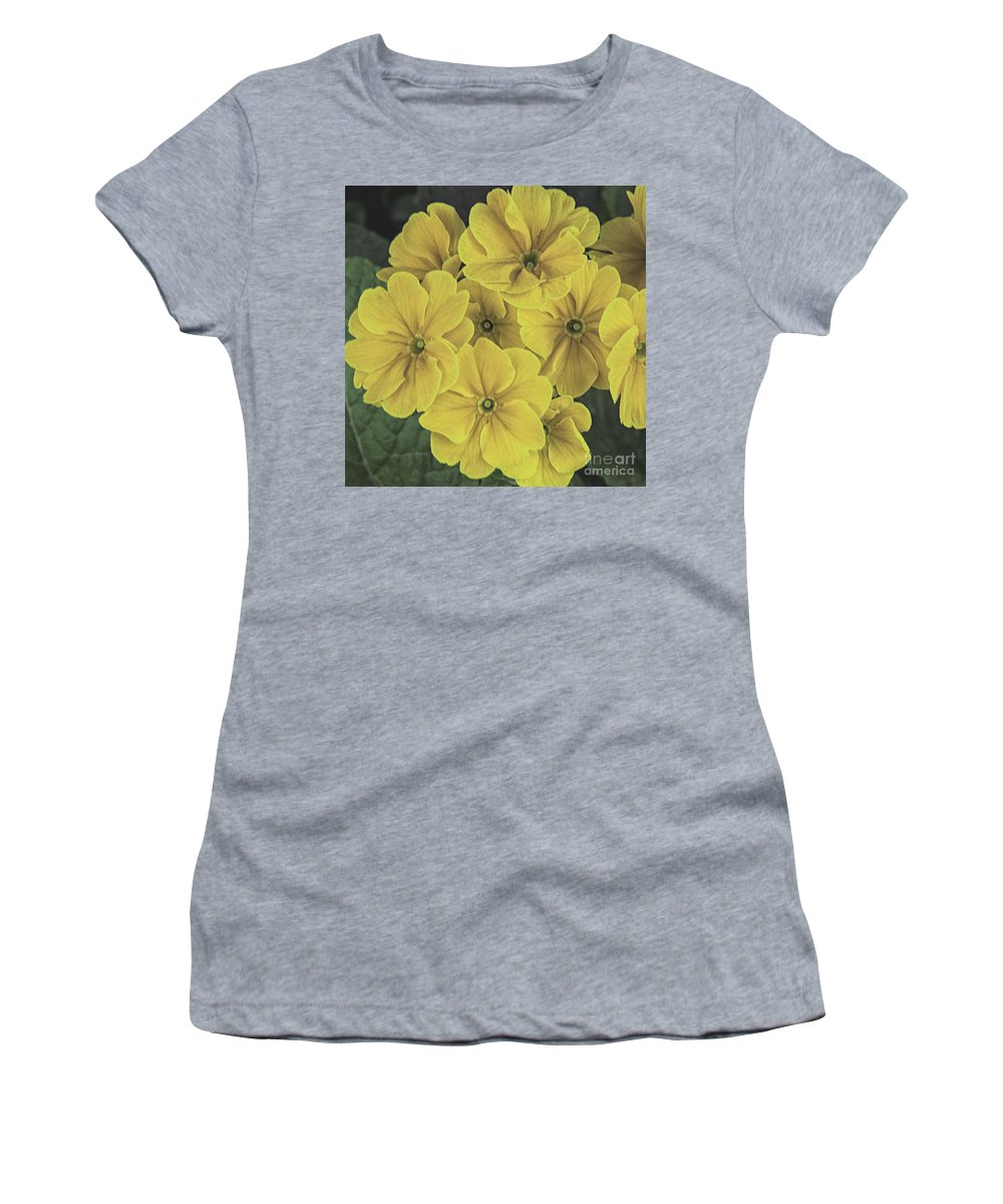 Flora Women's T-Shirt (Athletic Fit) featuring the photograph Polywassnames by Rob Hawkins
