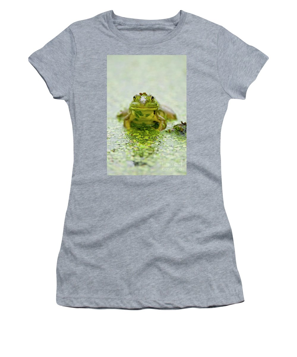 Frog Women's T-Shirt featuring the photograph Pond Frog 7 by Michael Cummings