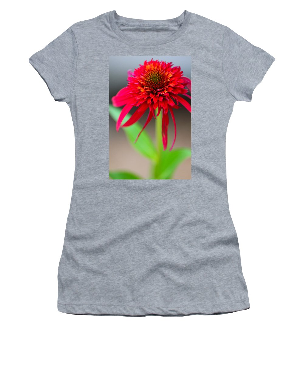 Flower Women's T-Shirt (Athletic Fit) featuring the photograph Radient Red by Karen Wagner
