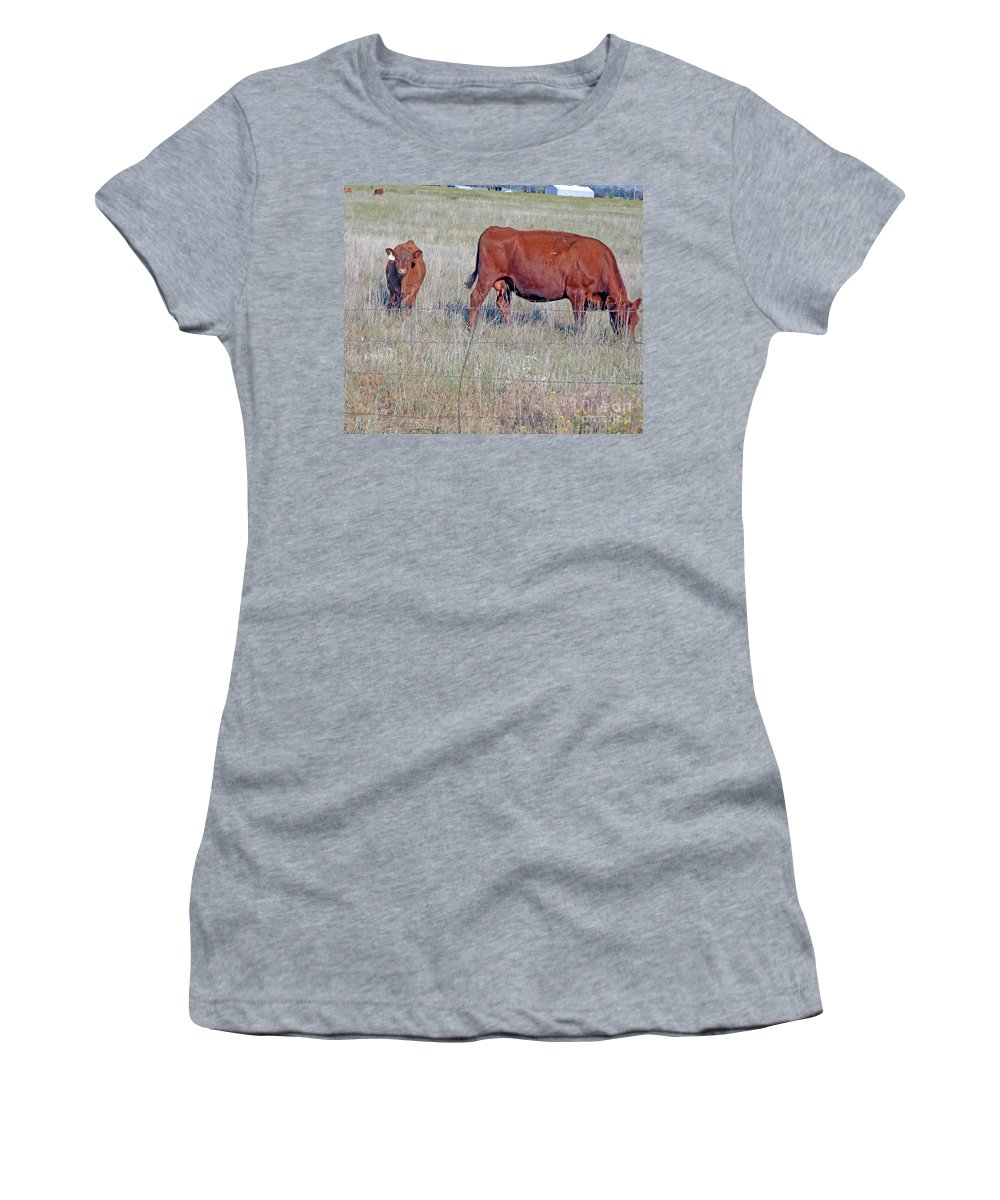 Calf Women's T-Shirt featuring the photograph Red Angus Cow And Calf by Kay Novy