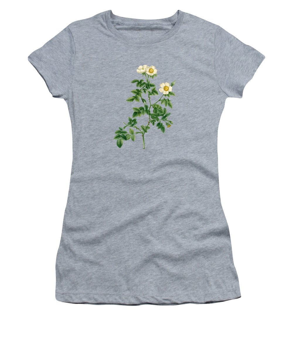 Rose Women's T-Shirt featuring the painting Rose135 by The one eyed Raven