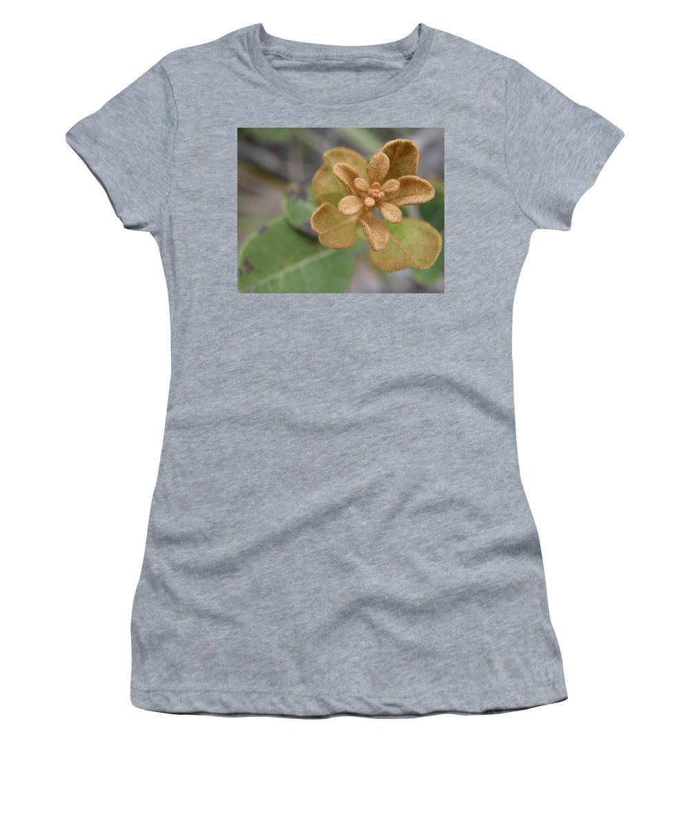 Plant Women's T-Shirt (Athletic Fit) featuring the photograph Rusty Lyonia by Kimberly Mohlenhoff