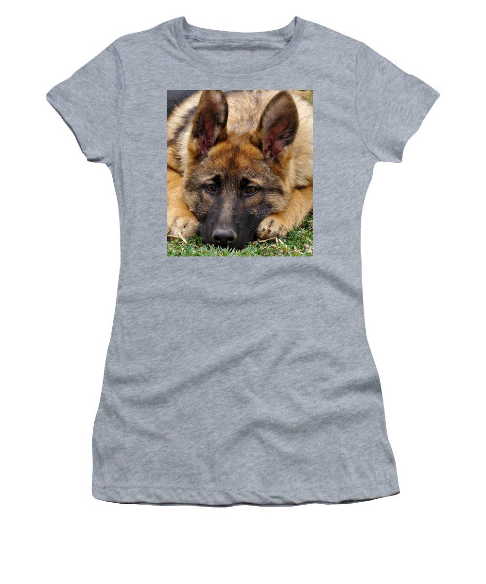 German Shepherd Women's T-Shirt (Athletic Fit) featuring the photograph Sable German Shepherd Puppy by Sandy Keeton