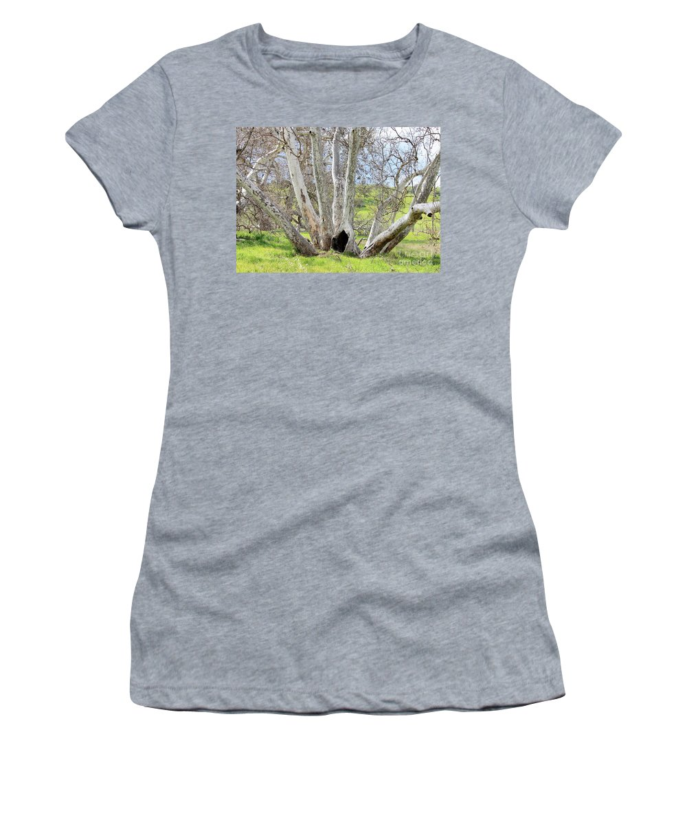 Tree Women's T-Shirt (Athletic Fit) featuring the photograph Secret Passageway by Carol Groenen