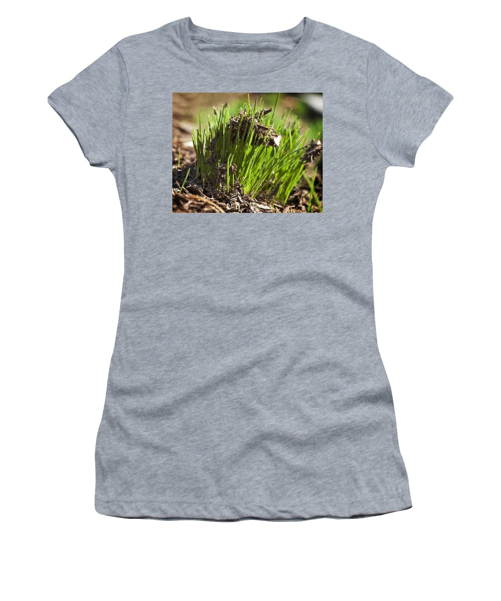 Grass Women's T-Shirt (Athletic Fit) featuring the photograph Seedlings by Kelley King
