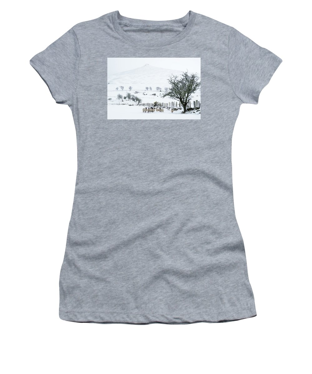 Sheep Women's T-Shirt (Athletic Fit) featuring the photograph Sheep Shelter by Joe Ormonde