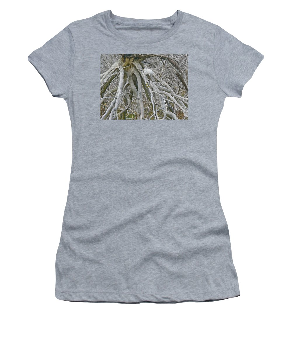 Snowy Egret Women's T-Shirt (Athletic Fit) featuring the photograph Snowy Egret - Egretta Thula - On Marsh Tangle by Mother Nature