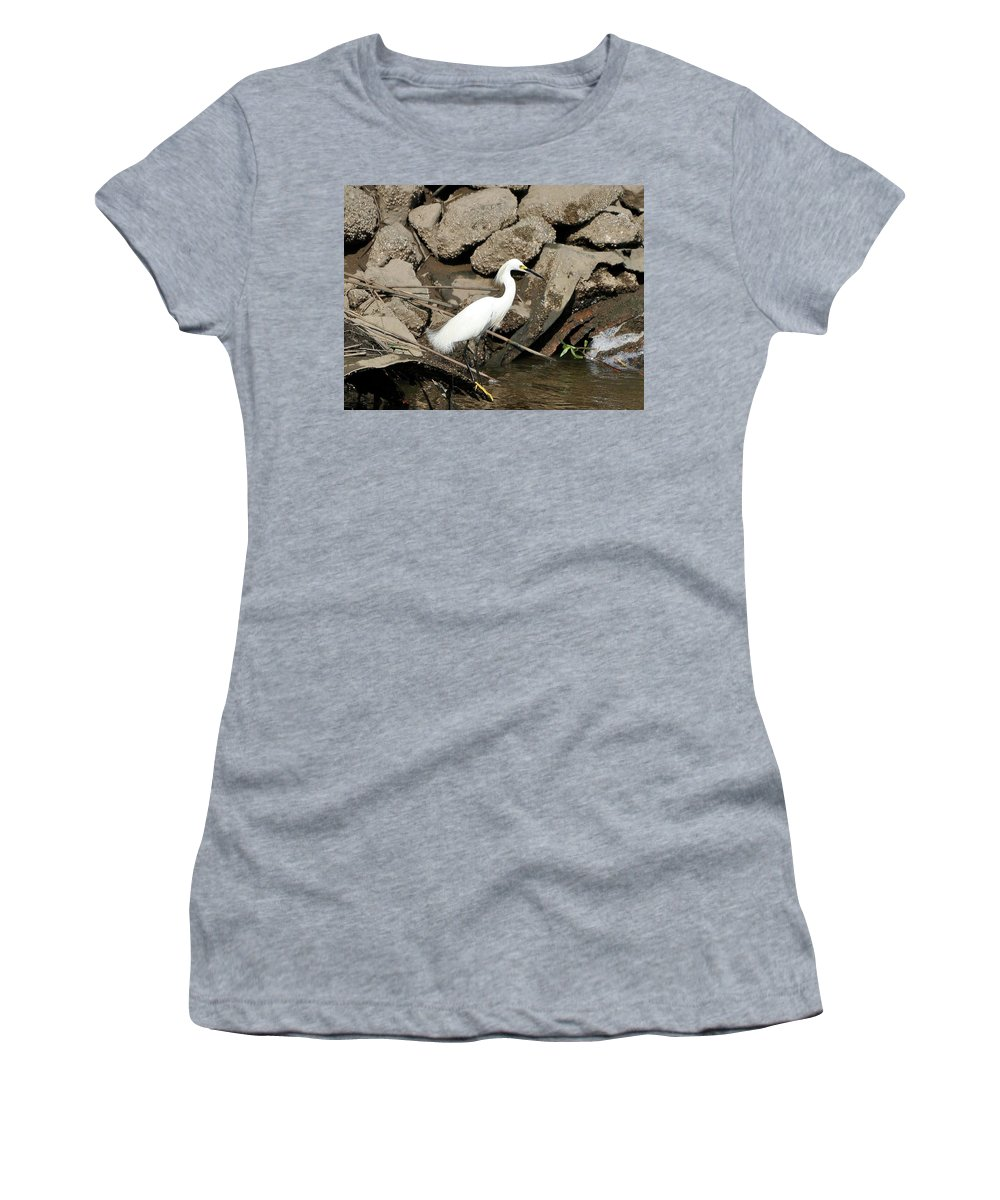 Snowy Egret Women's T-Shirt featuring the photograph Snowy Egret Fishing by Al Powell Photography USA