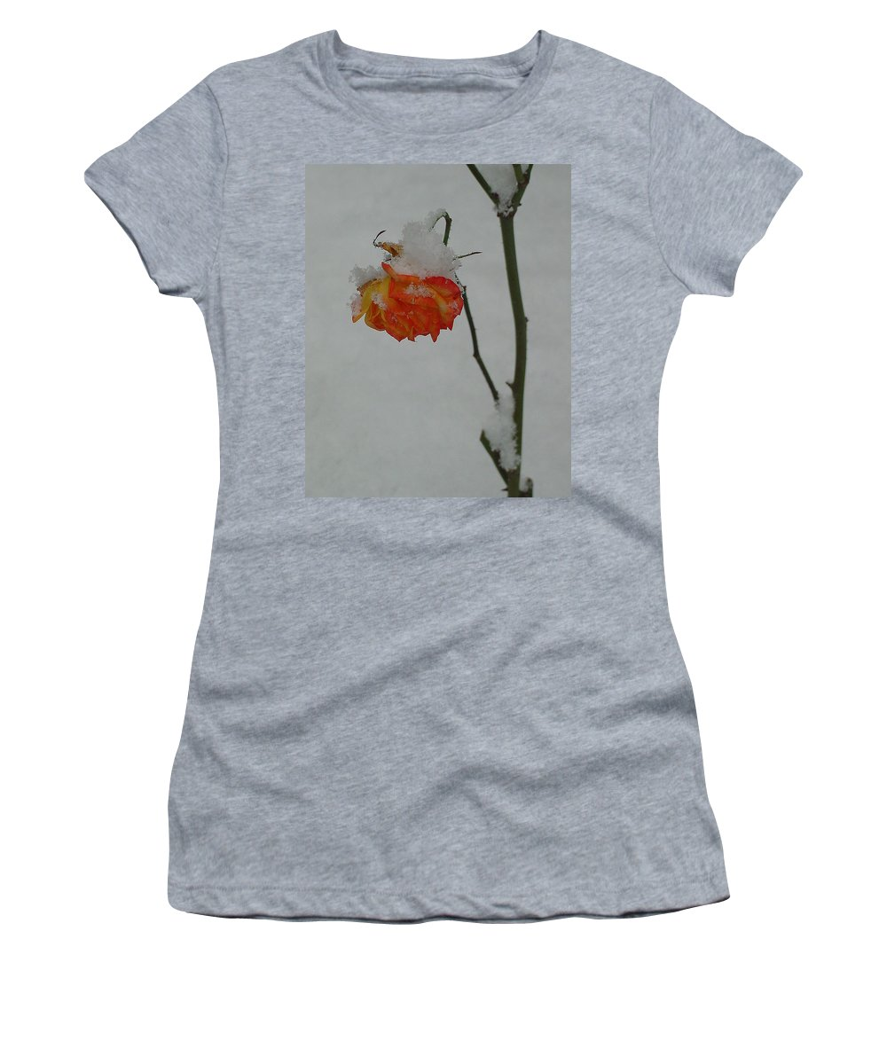 Flower Women's T-Shirt (Athletic Fit) featuring the photograph Snowy Orange Rose by Shirley Heyn