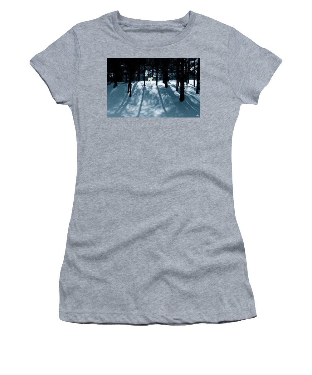 Spirit Women's T-Shirt featuring the photograph Spirit Pony In A Shadowed Wood by Wayne King