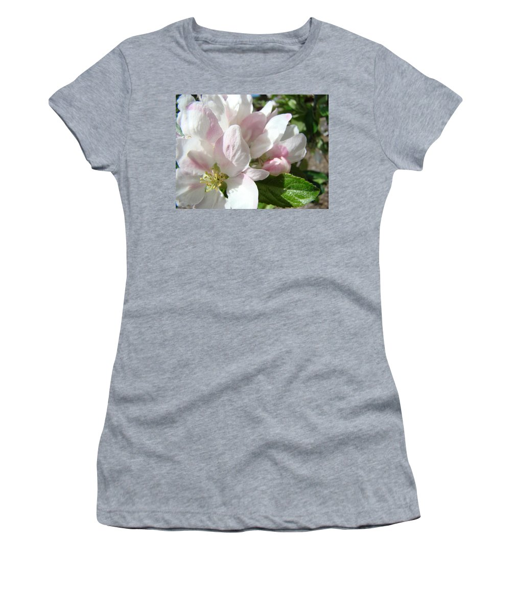 Apple Women's T-Shirt featuring the photograph Spring Apple Blossoms Art Prints Apple Tree Baslee Troutman by Baslee Troutman
