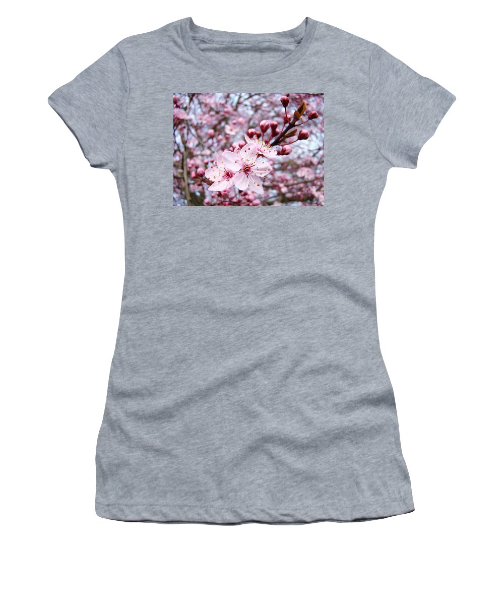 Blossom Women's T-Shirt featuring the photograph Spring Blossoms Art Pink Tree Blossom Baslee Troutman by Baslee Troutman