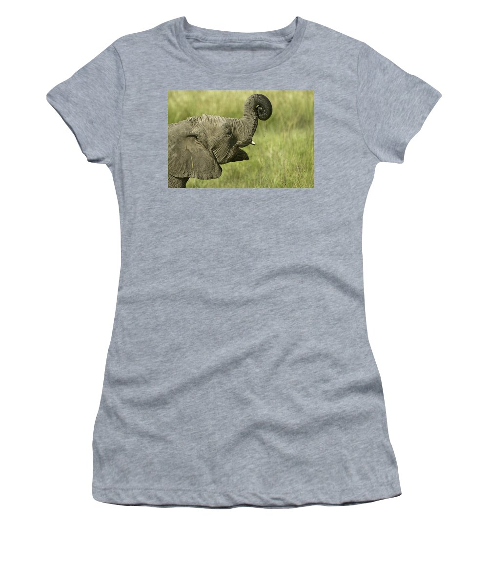 Africa Women's T-Shirt featuring the photograph Squirting Water by Michele Burgess