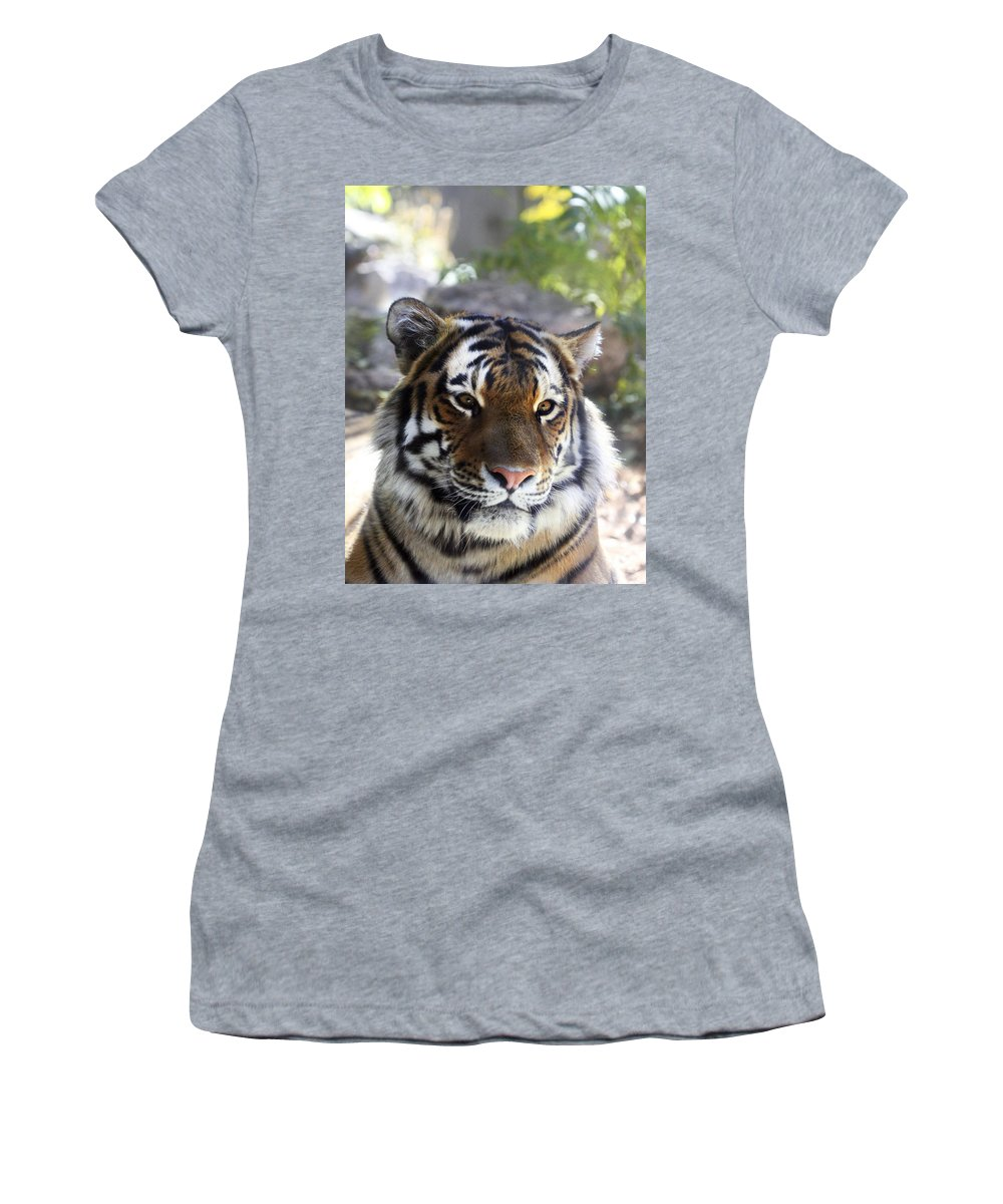 Animal Women's T-Shirt (Athletic Fit) featuring the photograph Striped Beauty by Marilyn Hunt