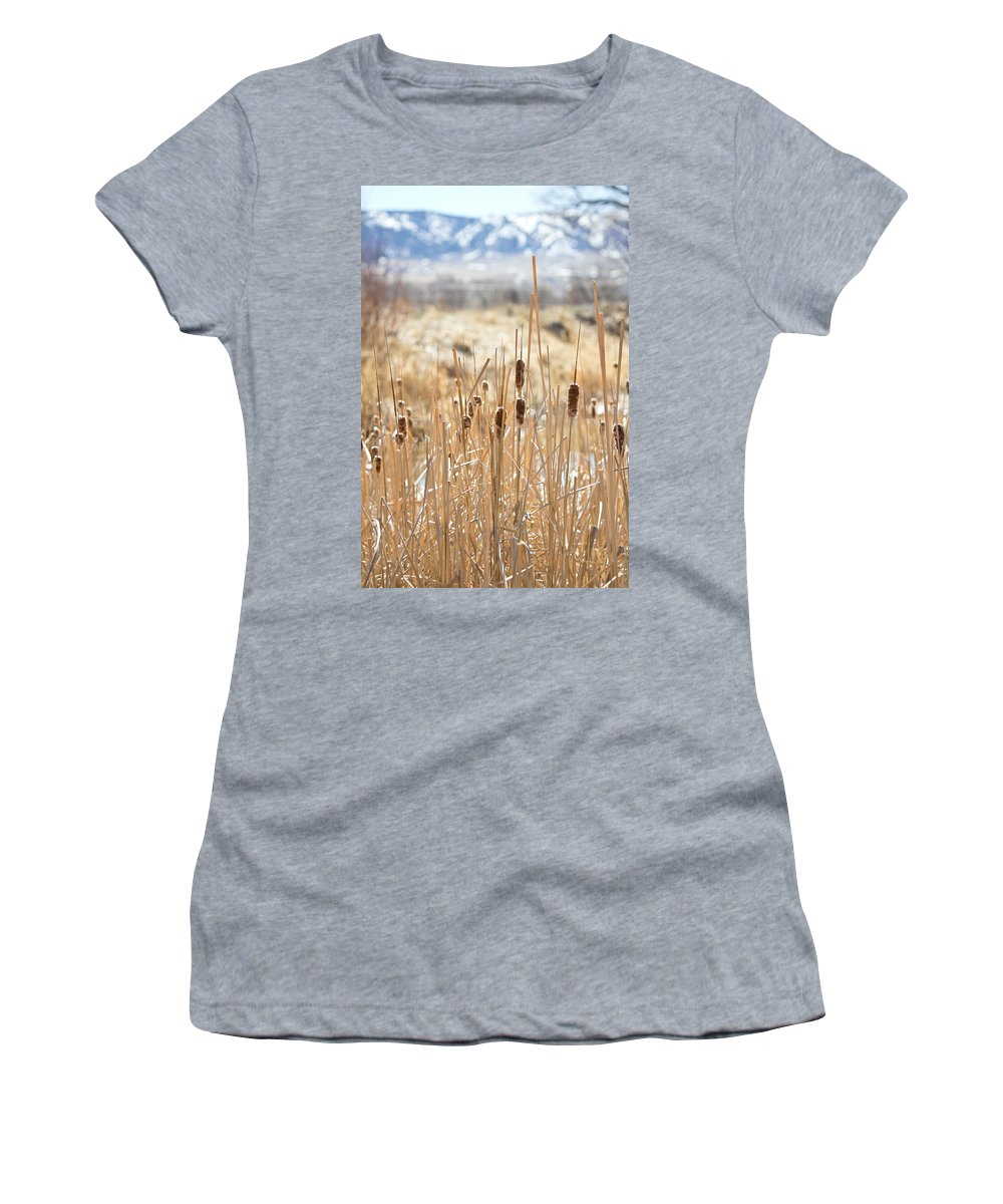 Cattails Women's T-Shirt (Athletic Fit) featuring the photograph Sun Kissed Cattails - Casper Wyoming by Diane Mintle
