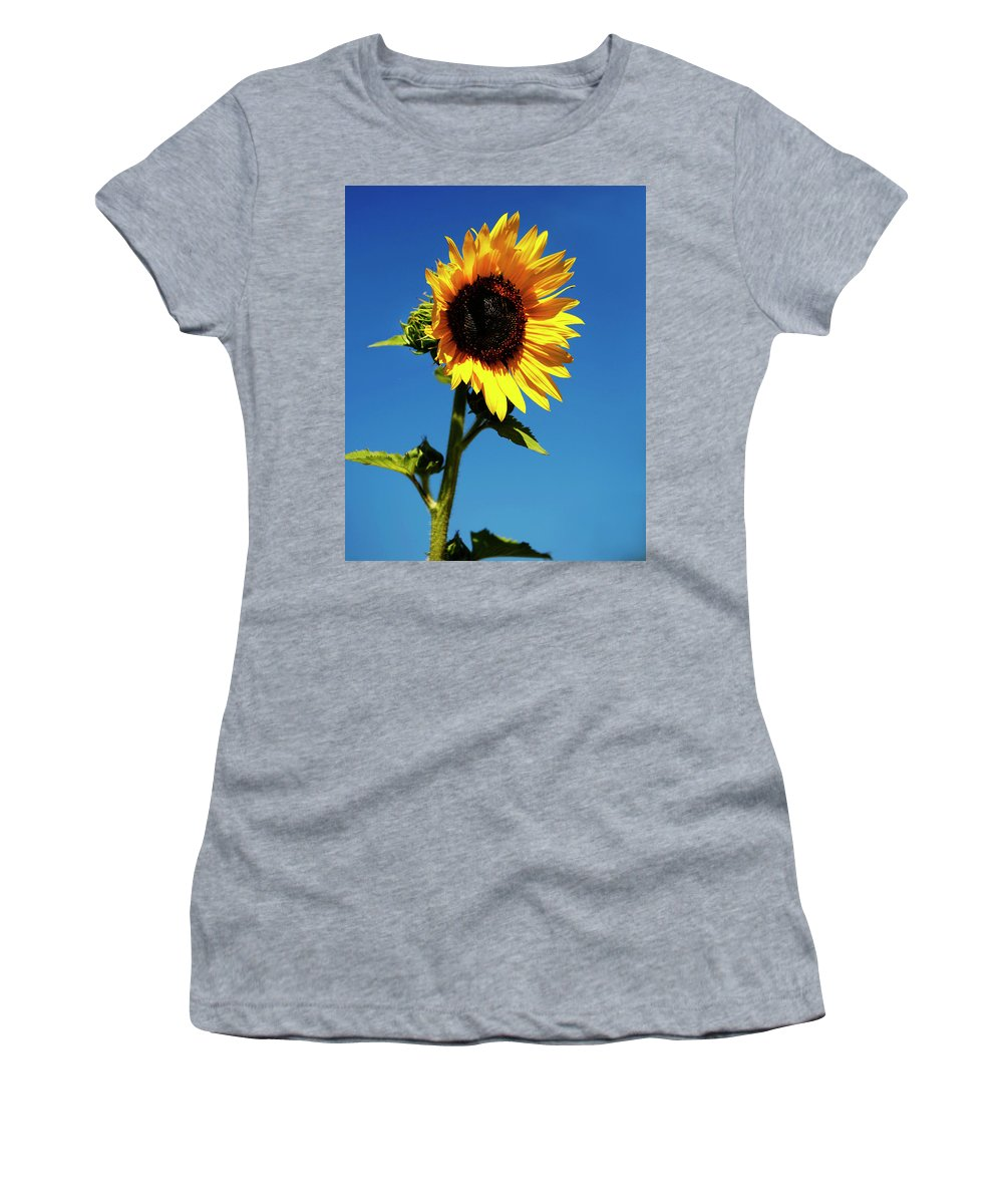 Sunflower Women's T-Shirt (Athletic Fit) featuring the photograph Sunflower Stand Alone by Marilyn Hunt