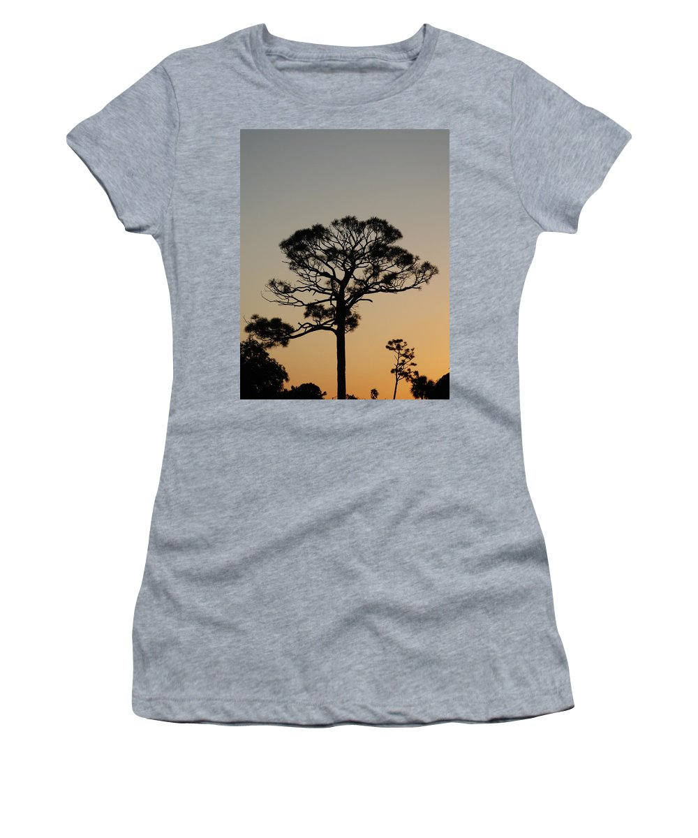 Tree Women's T-Shirt featuring the photograph Sunsetting Trees by Rob Hans