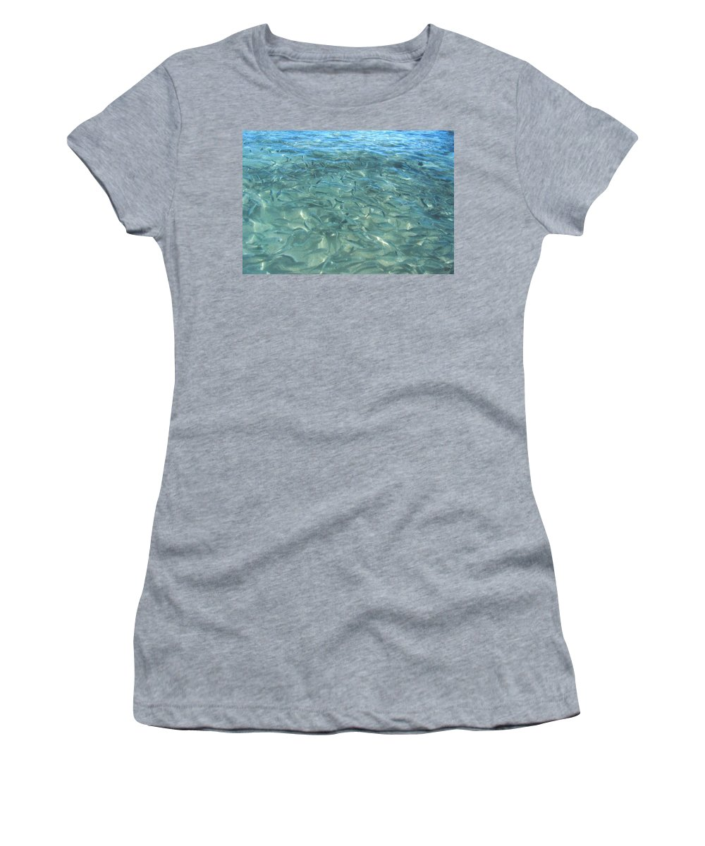 1986 Women's T-Shirt (Athletic Fit) featuring the photograph Swarming Fish by Will Borden