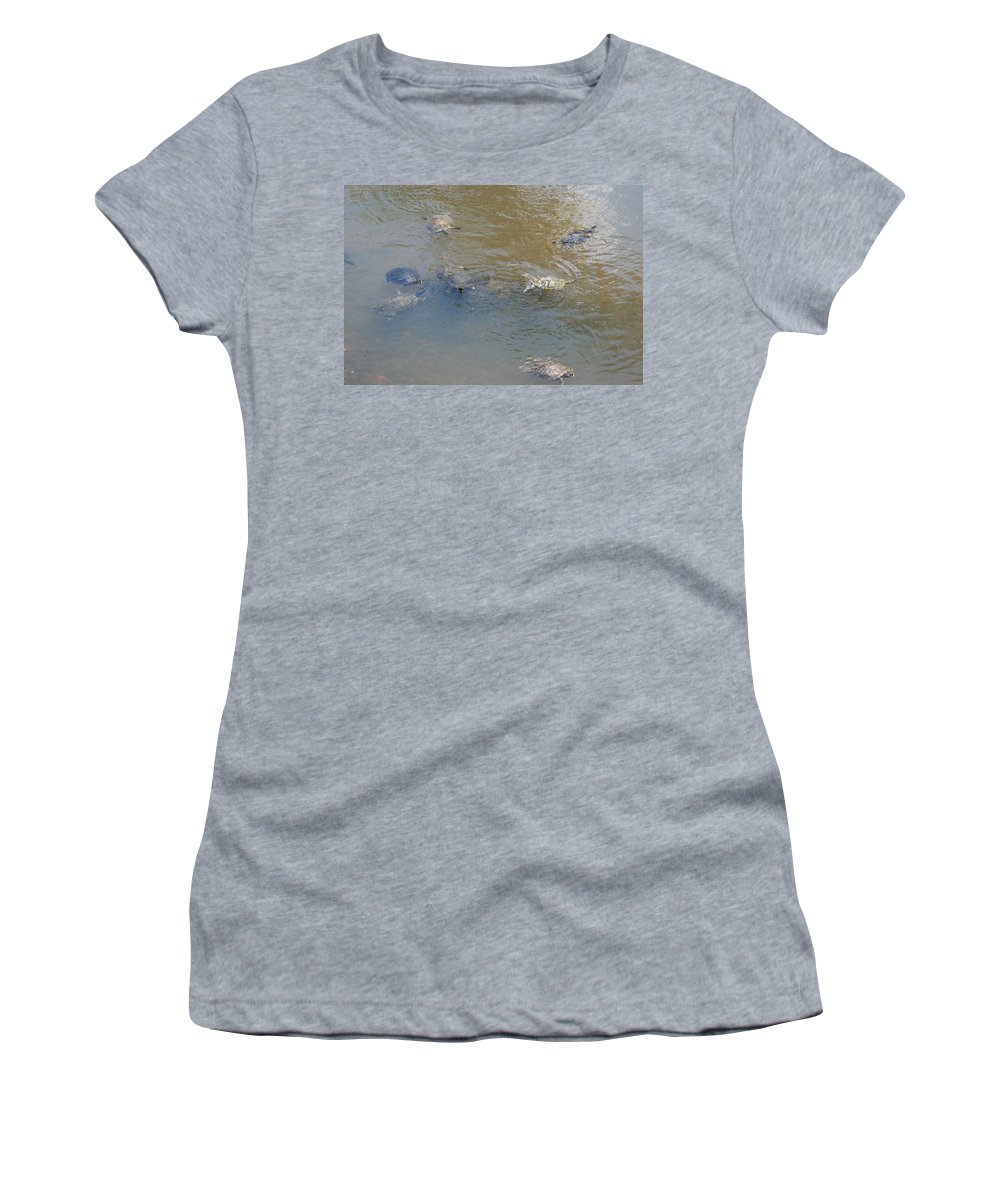 Water Women's T-Shirt (Athletic Fit) featuring the photograph Swimming Turtles by Rob Hans