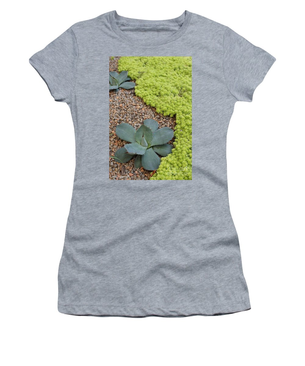 Cacti Women's T-Shirt featuring the photograph Texture by Shelley Jones