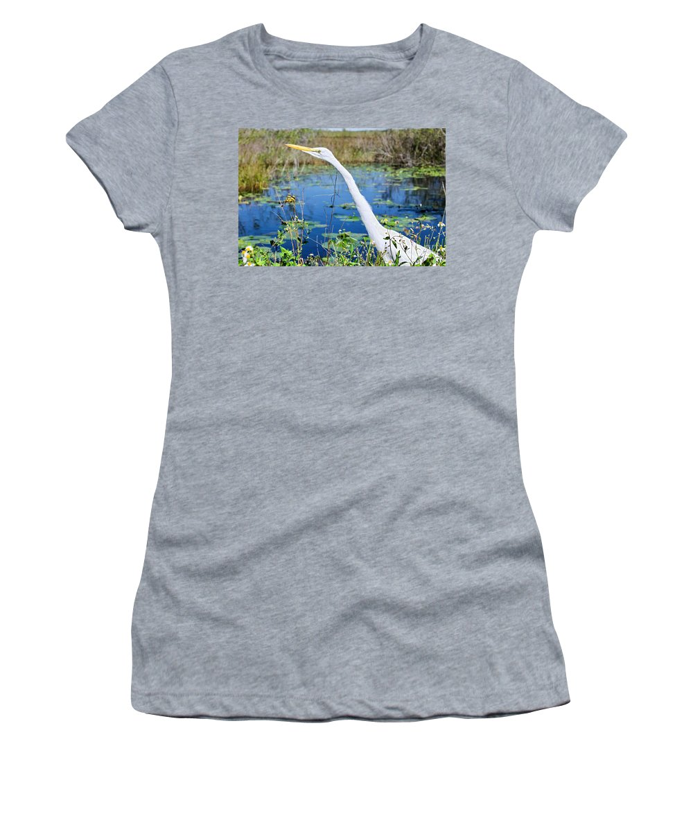 Birds Women's T-Shirt (Athletic Fit) featuring the photograph The Egret And The Dragonfly by Judy Kay