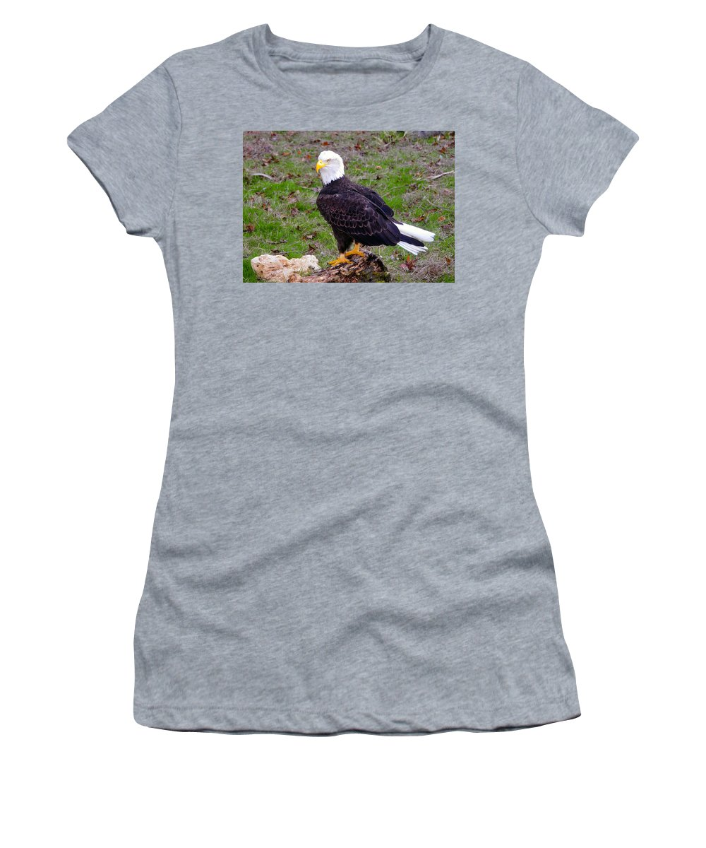 Bald Eagle Women's T-Shirt featuring the photograph The Great Bald Eagle by David Lee Thompson