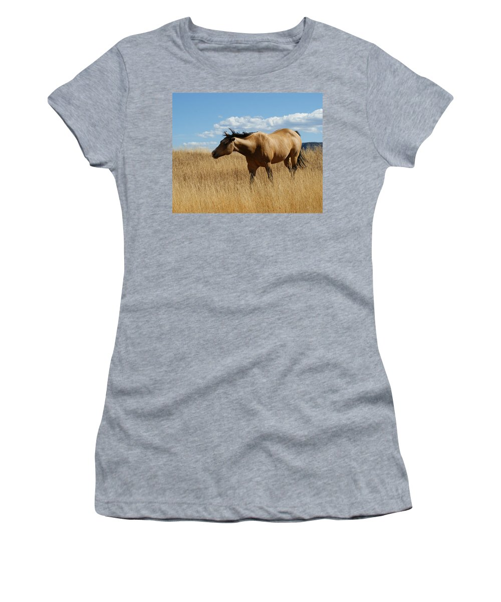 Horse Women's T-Shirt (Athletic Fit) featuring the photograph The Horse by Ernie Echols