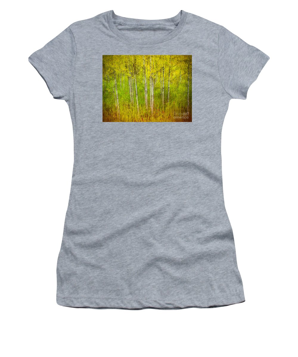 Forest Women's T-Shirt (Athletic Fit) featuring the photograph The Small Forest by Tara Turner