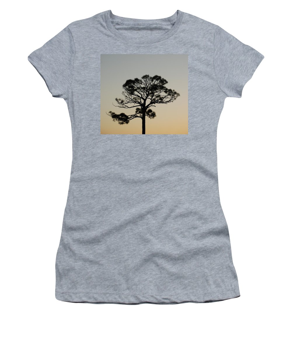 Tree Women's T-Shirt featuring the photograph Trees In Sunset by Rob Hans