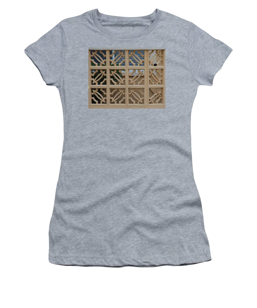 Sculpture Women's T-Shirt (Athletic Fit) featuring the photograph Turtle Board by Rob Hans