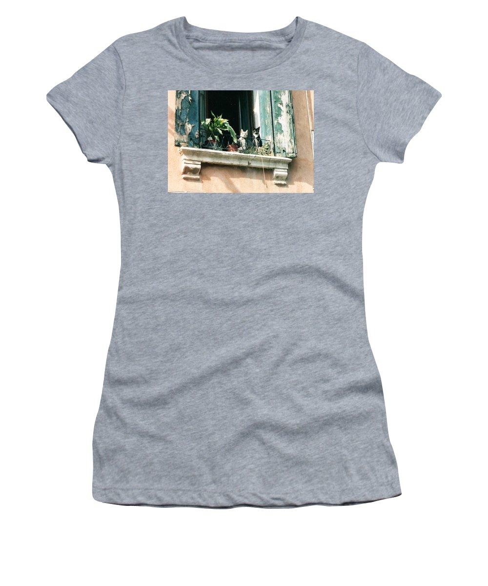 Venice Women's T-Shirt (Athletic Fit) featuring the photograph Venetian Cats by Lauri Novak